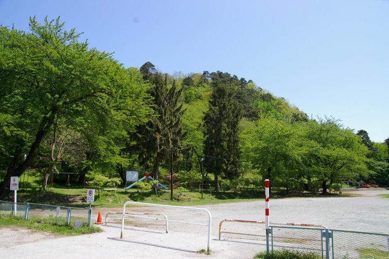 若木山 緑の風景 初夏