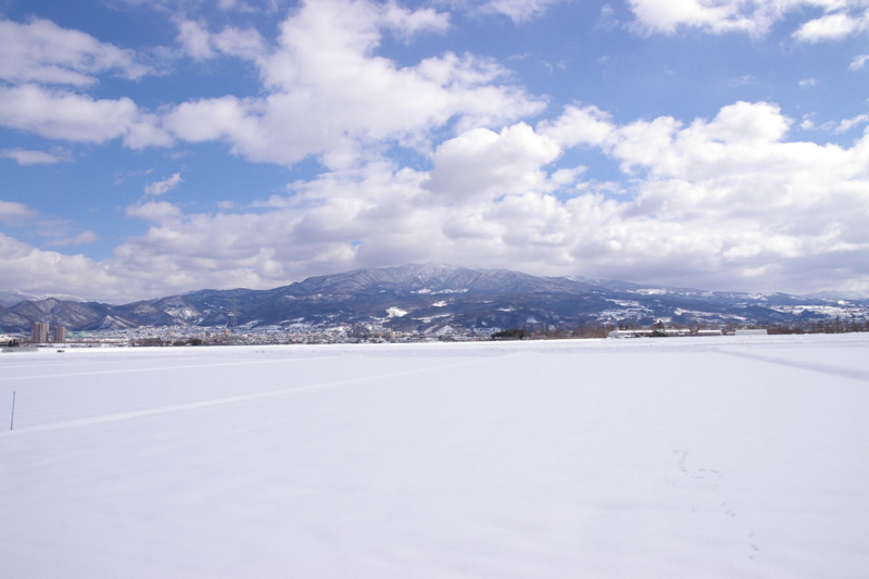 冬の田んぼから蔵王眺め