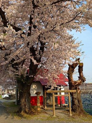 白水川沿いの豊作稲荷神社