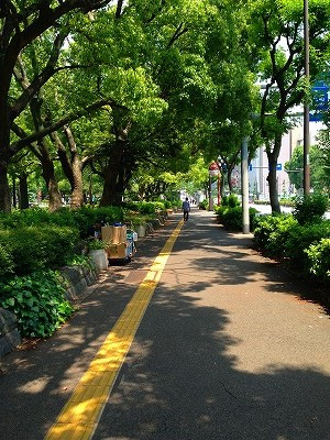 東京都港区芝公園