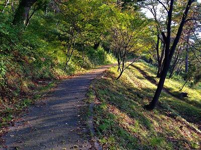 夏は終わり、秋らしい風景の若木山の上り路