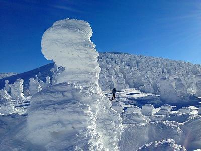 雪のモンスター、樹氷も輝かしいです