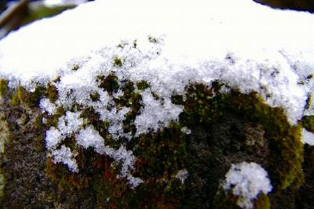 石灯籠の雪