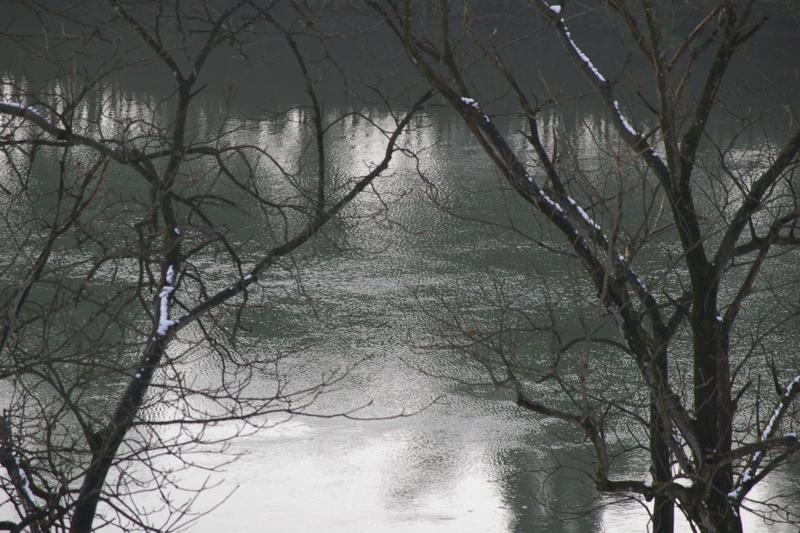 村山市 大淀の流れ 最上川