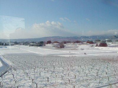 白布の雪景色