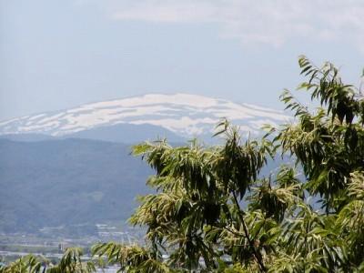 「雲の峯幾つ崩て月の山」