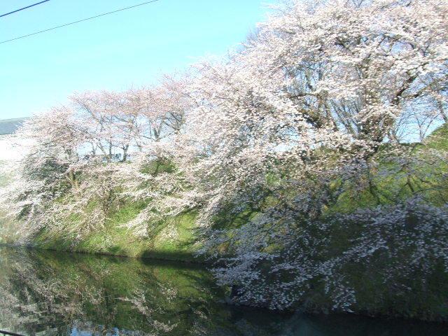 山形新幹線車窓 「山形城東大手門桜見上げ」