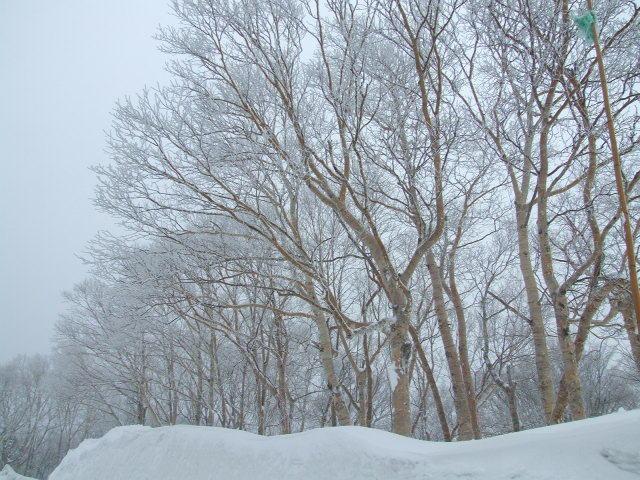 102号の雪景色