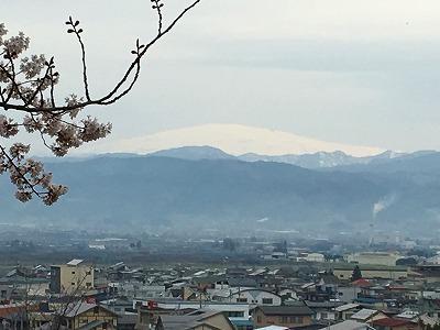 桜と月山の眺め