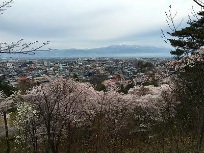 月山と葉山と桜