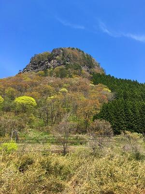 鎌倉山、通称「ゴリラ山」