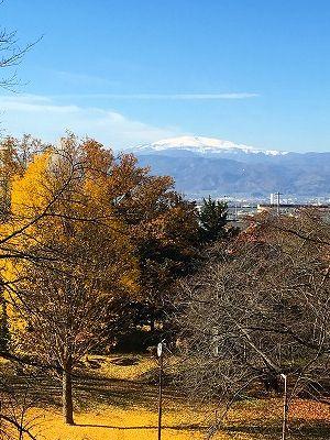 若木山から銀杏と月山