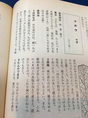 漢方と民間薬百科 牛蒡(ゴボウ)