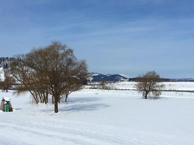 冬の最上川 河川敷