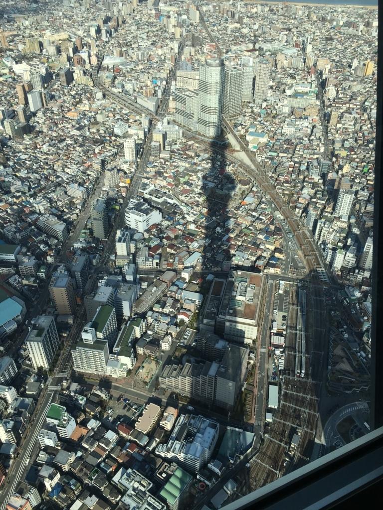 東京スカイツリーの影