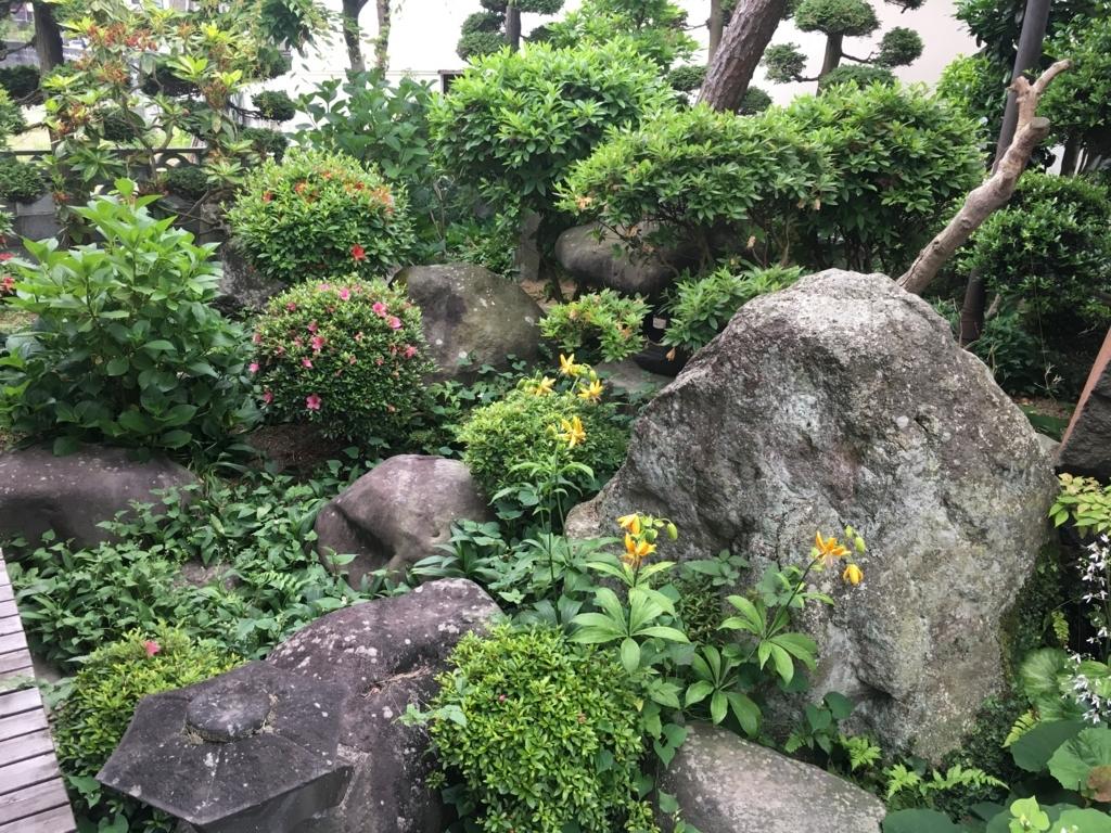 石の陰で草むしりしていました。