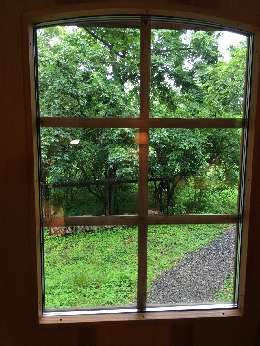 入り口から外を眺めます