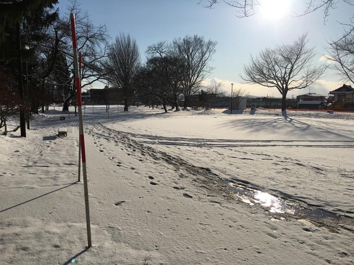 冬の若木山公園