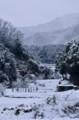 京都新聞写真コンテスト  白の世界