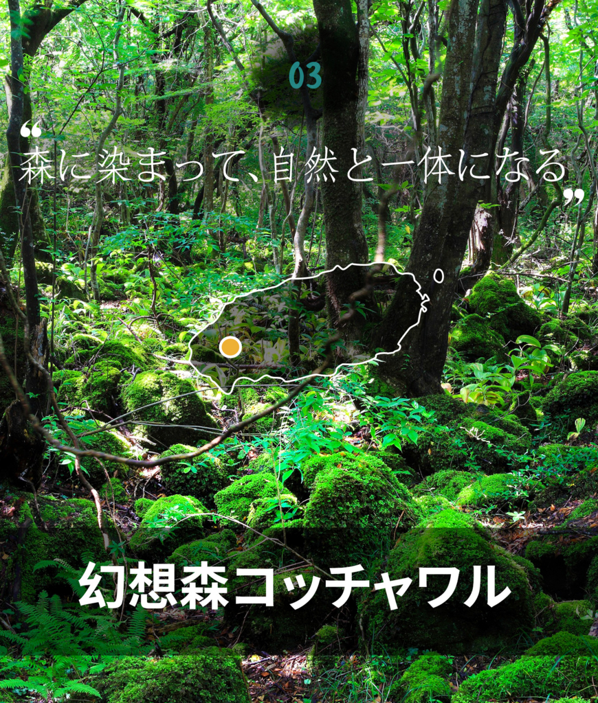 f:id:jejutour_jp:20170824085120j:plain