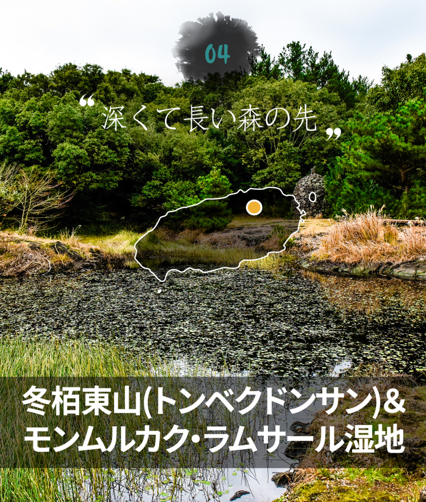 f:id:jejutour_jp:20170824085133j:plain