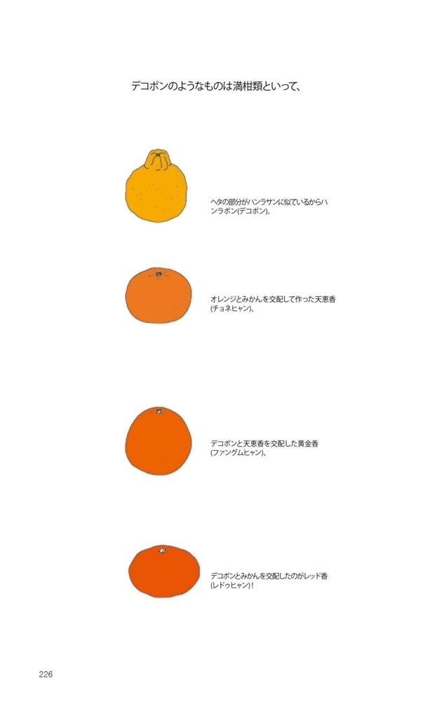f:id:jejutour_jp:20170915153127j:plain