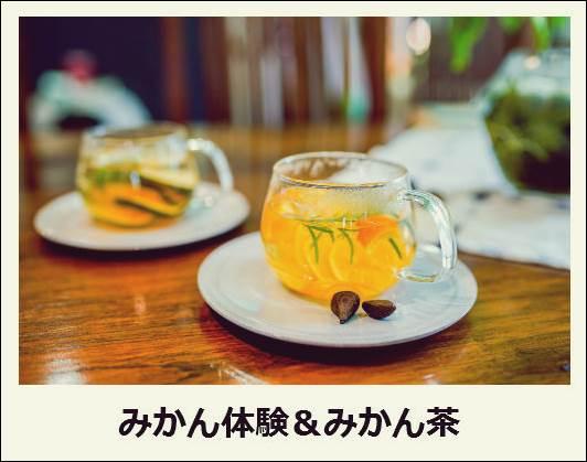 f:id:jejutour_jp:20171019133027j:plain