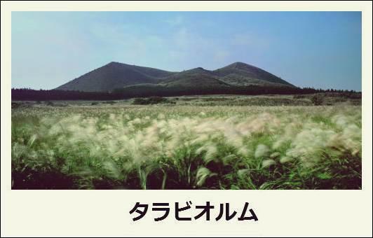 f:id:jejutour_jp:20171019133041j:plain