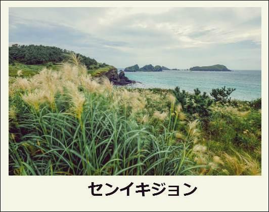 f:id:jejutour_jp:20171019133055j:plain