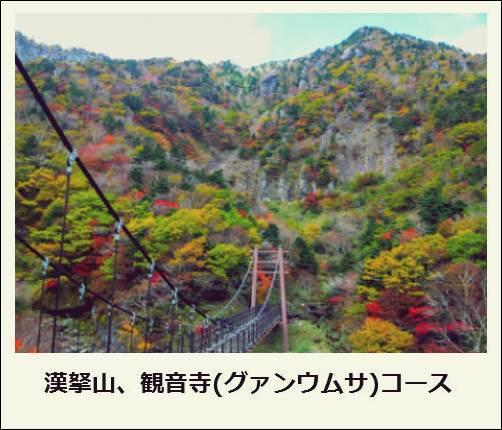 f:id:jejutour_jp:20171019133133j:plain