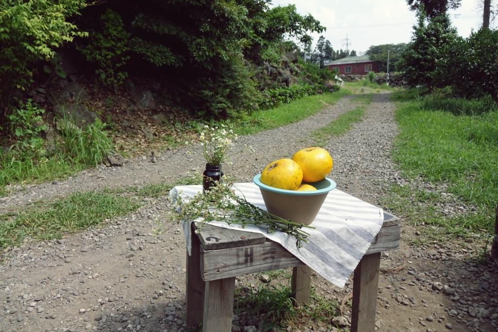 f:id:jejutour_jp:20171102141633j:plain