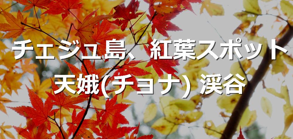 f:id:jejutour_jp:20171108131559j:plain