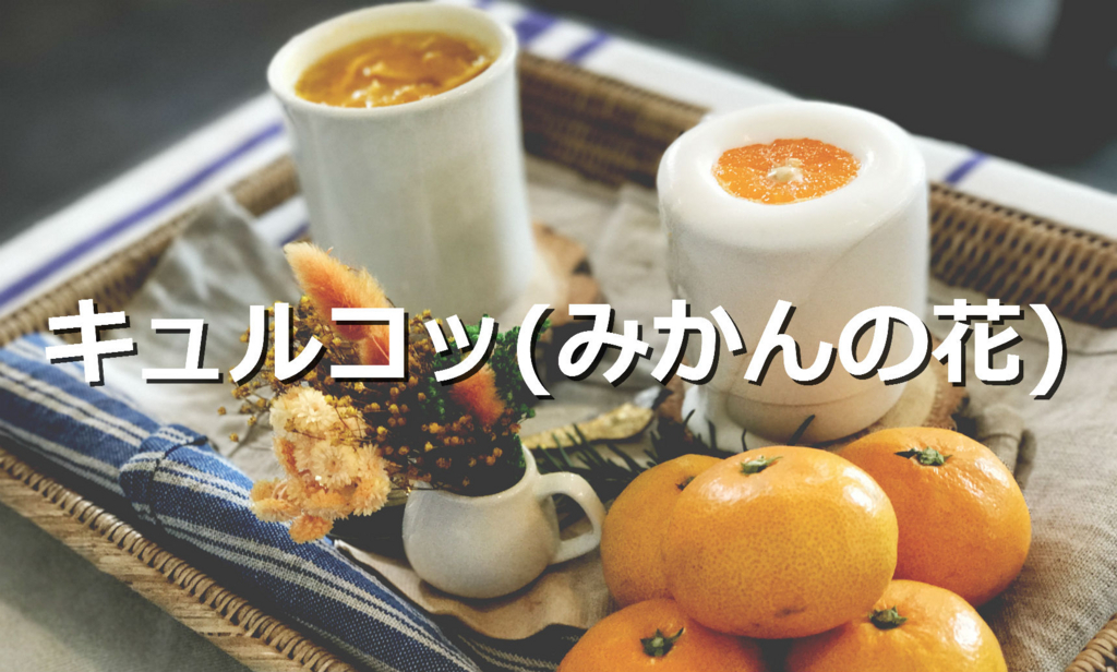 f:id:jejutour_jp:20171123114822j:plain
