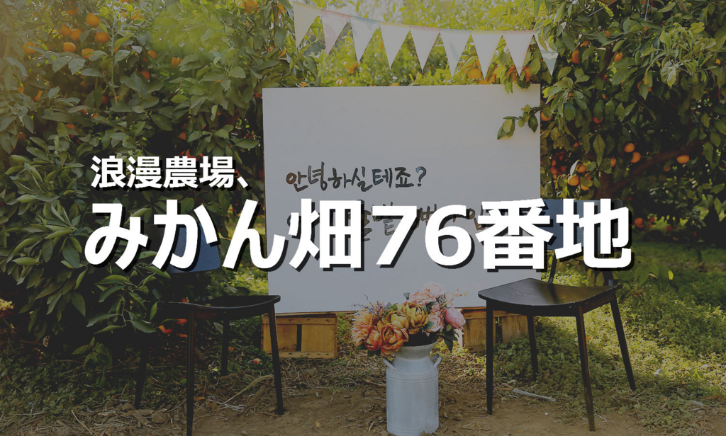 f:id:jejutour_jp:20171227100444j:plain