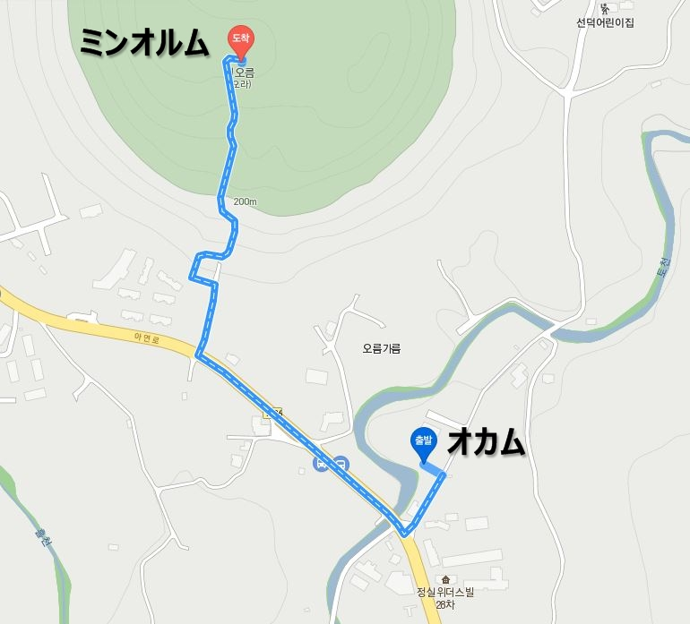 f:id:jejutour_jp:20190311160151j:plain
