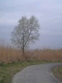 2010年4月撮影 立川