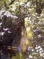 2010年11月撮影 立川