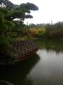 2017年秋・昭和記念公園 日本庭園