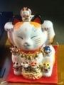 猫看板集合! その9