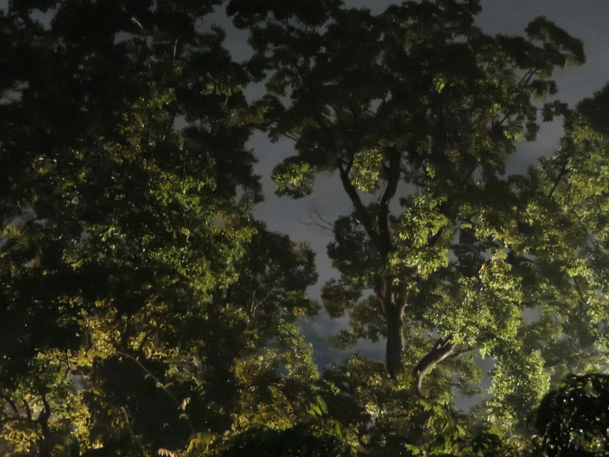 2019年8月撮影 立川