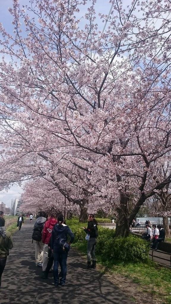 f:id:jesd_shinyokohama:20170408170210j:plain