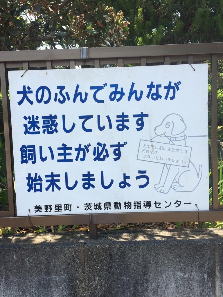 f:id:jet-shirei:20190105213318j:plain