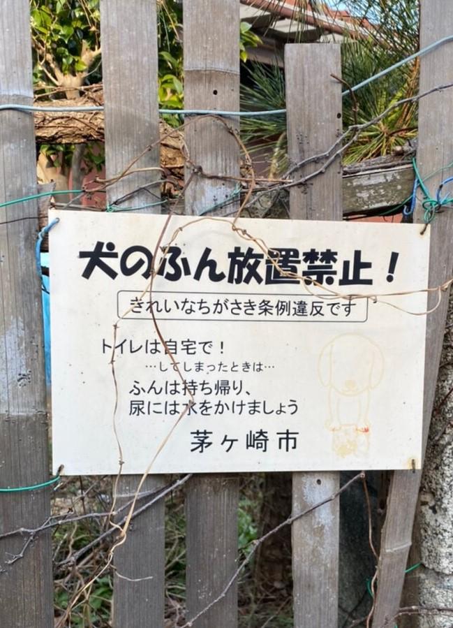 f:id:jet-shirei:20200503114913j:plain