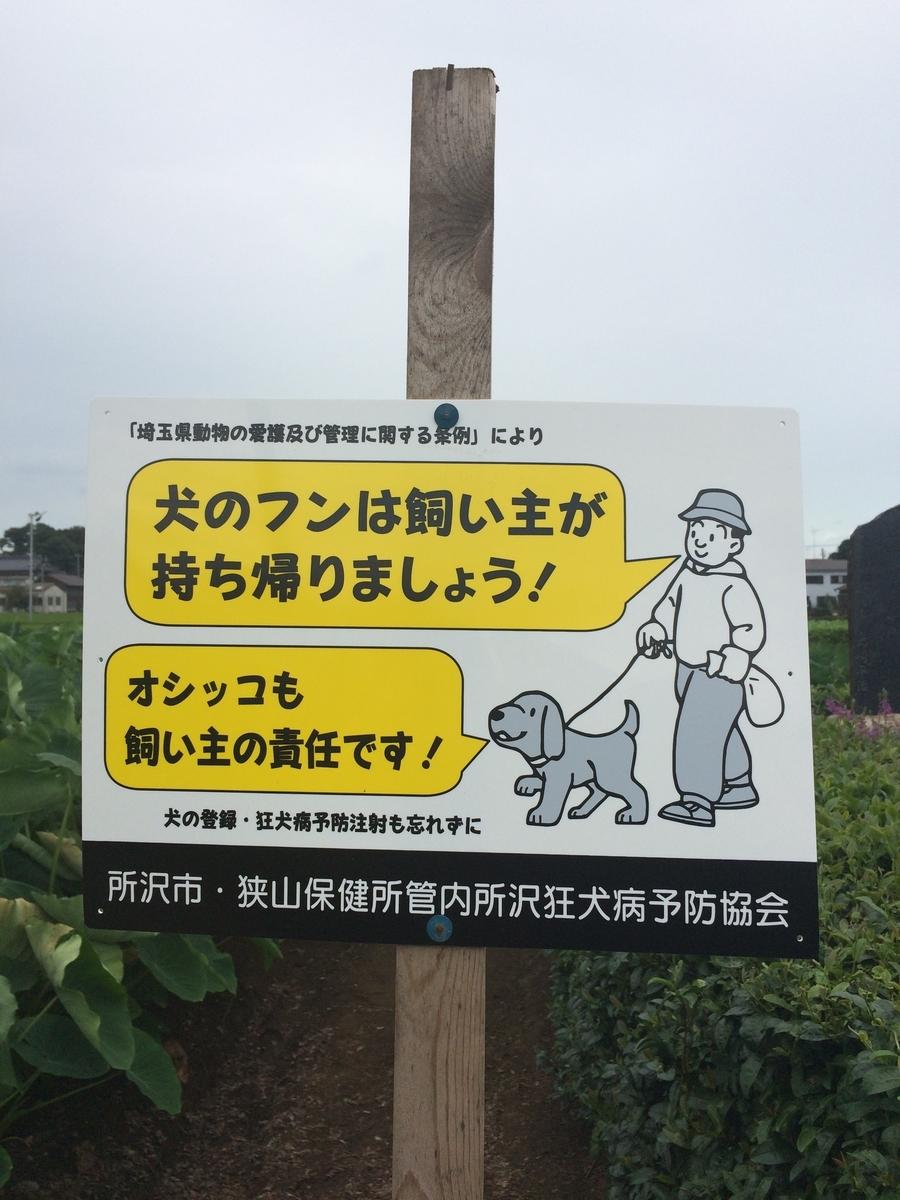 f:id:jet-shirei:20200520020043j:plain