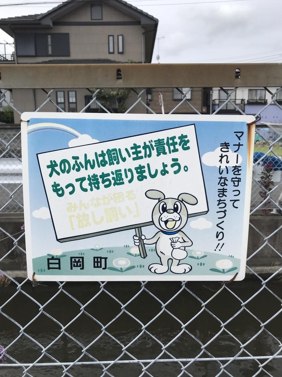 f:id:jet-shirei:20210113040019j:plain