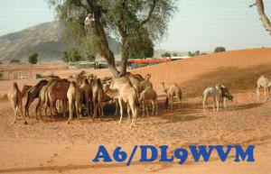 A6_dl9wvm_3