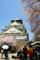 大阪城を見上げる。