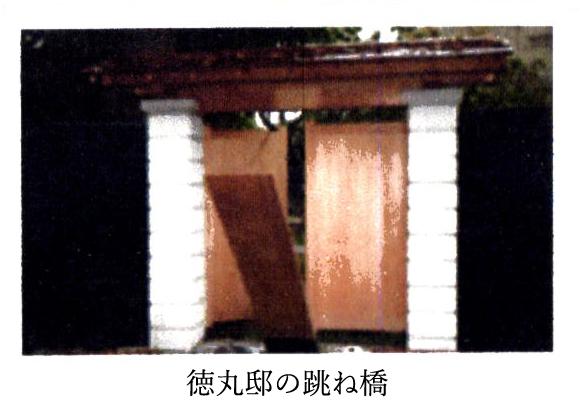 f:id:jiajiawarabi:20210118214159j:plain