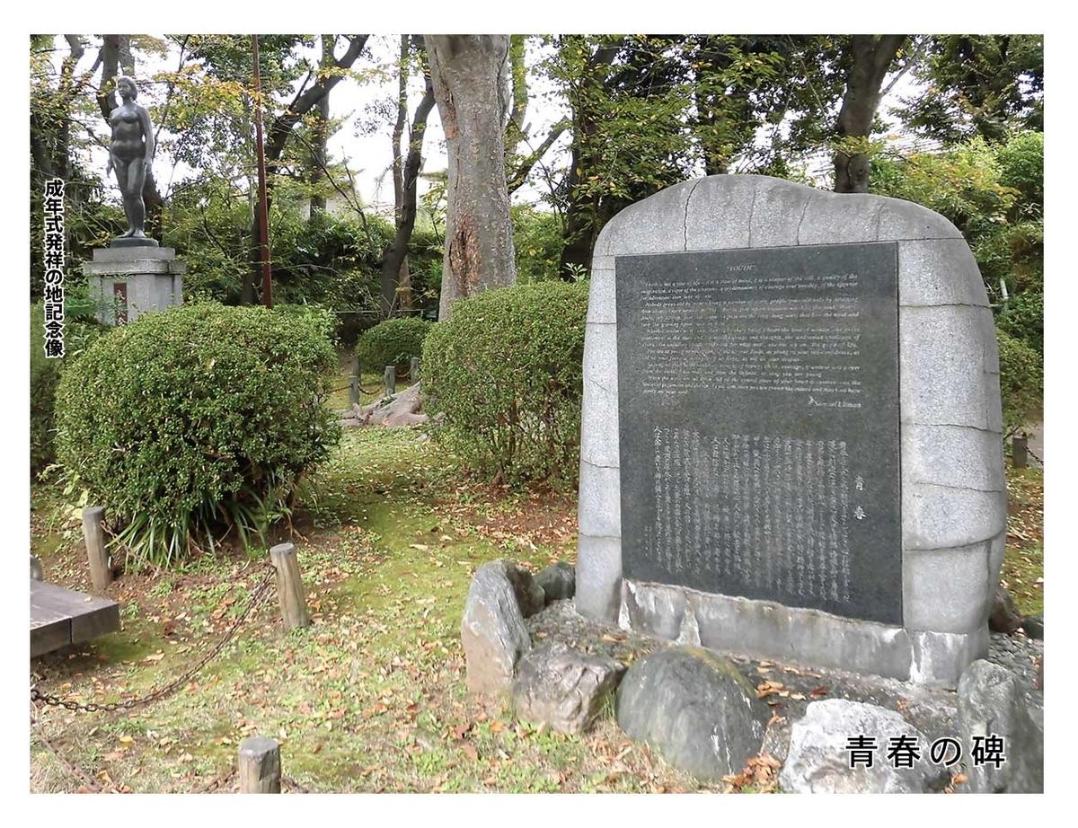 f:id:jiajiawarabi:20210123133440j:plain