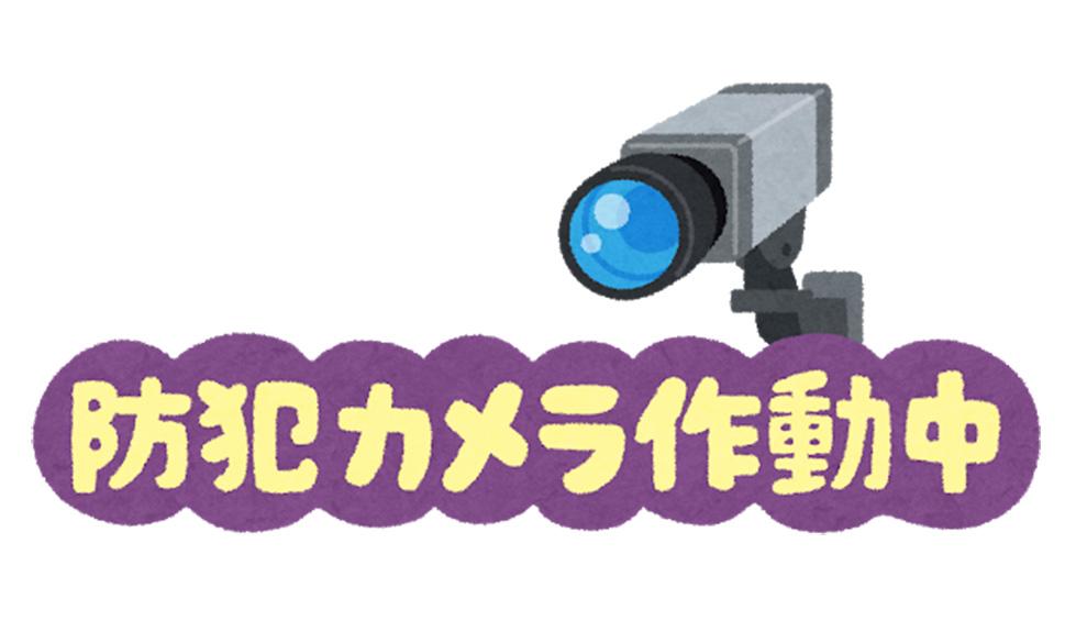 f:id:jiajiawarabi:20210406140217j:plain